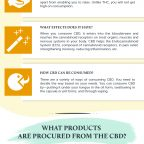 CBD-Guide-and-its-Different-Product-Types-Infographic